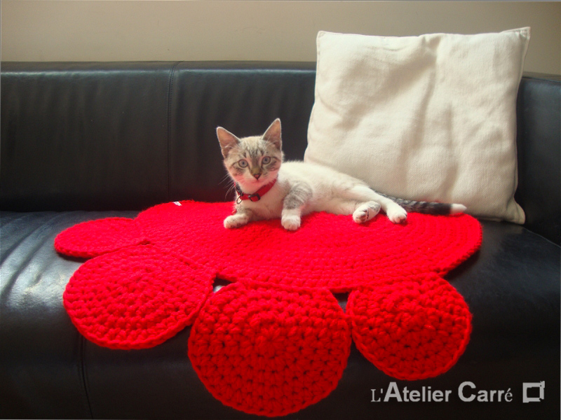 tapis-chien-chat-au-crochet-PM-rouge